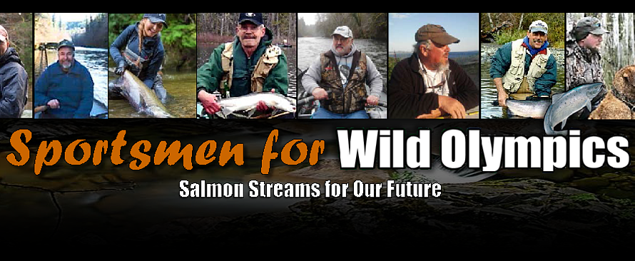 Salmon Streams For Our Future